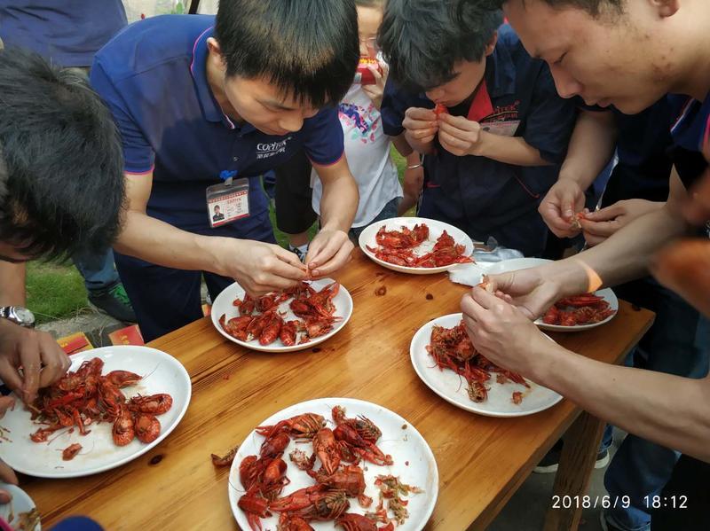 至简复印机员工活动-吃龙虾比赛.jpg